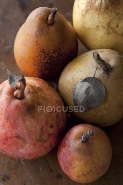 Variedade de peras maduras — Fotografia de Stock