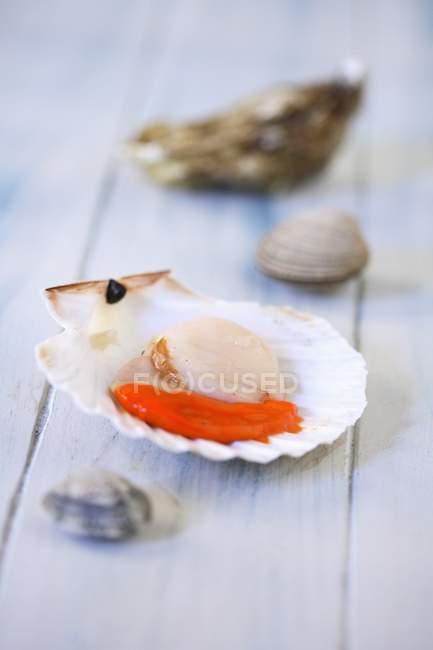 Primo piano vista di capesante aperte crude con piccoli crostacei sulla superficie di legno — Foto stock