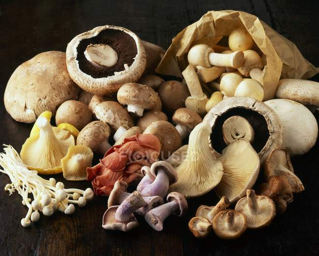 Натюрморт з Асорті гриби купи — стокове фото