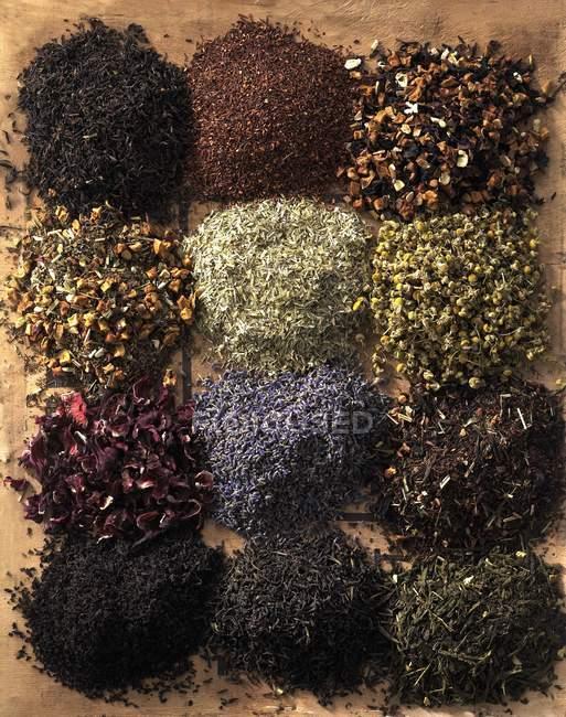 Surtido variedades de té - foto de stock