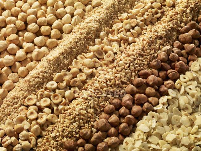 Hazelnuts in variety of shapes — Stock Photo