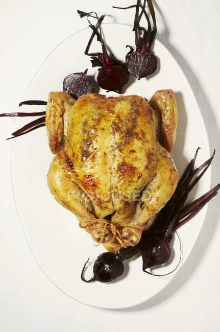 Pollo arrosto con barbabietola rossa affettata — Foto stock