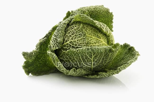 Verza fresca — Foto stock