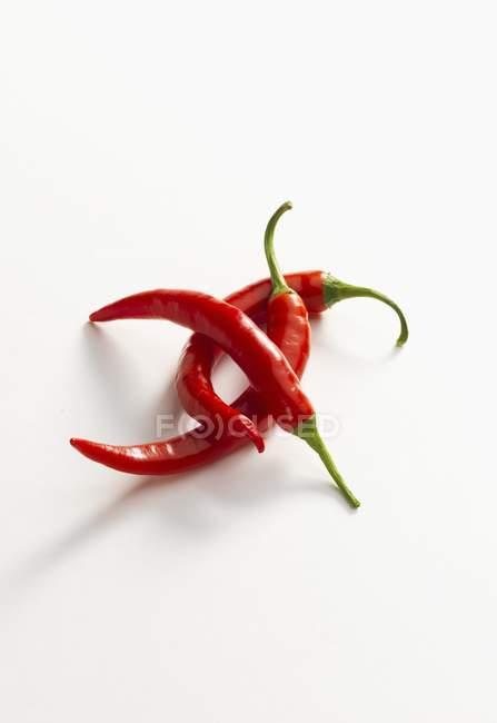 Frische rote Chilischoten — Stockfoto