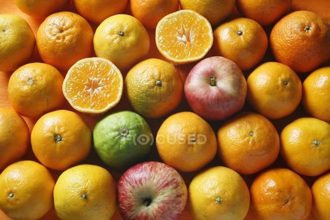 Fresh oranges and apples — Stock Photo