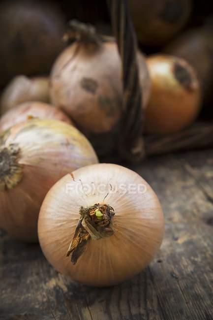 Close-up de cebolas em uma cesta — Fotografia de Stock