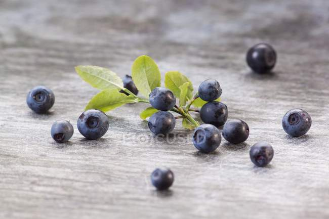 Fresh blueberries with leaves — Stock Photo