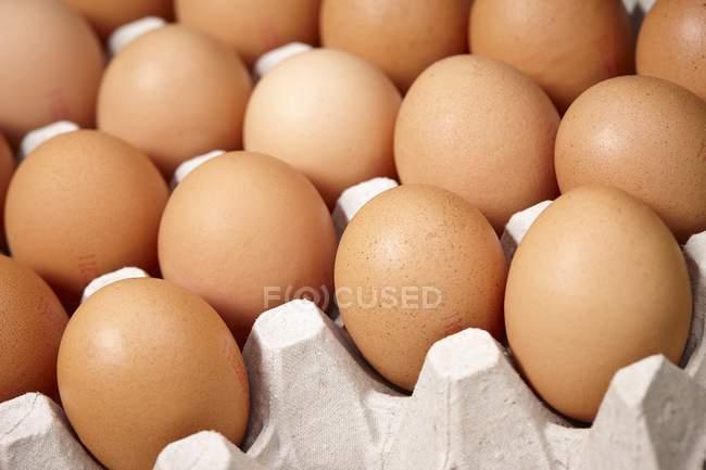 Brown eggs in egg box — Stock Photo