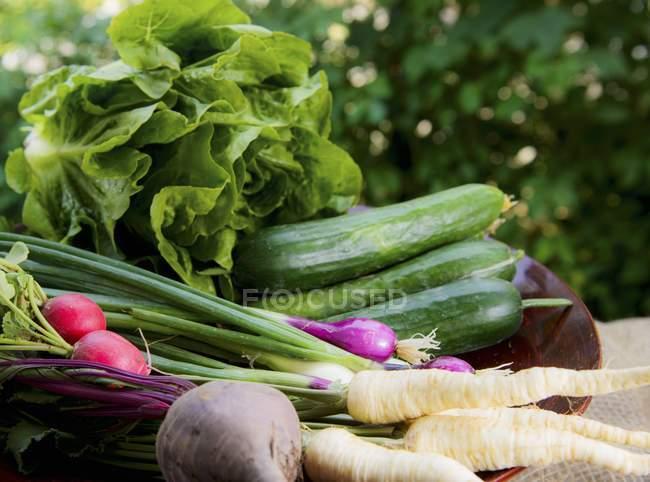 Verdure fresche e lattuga in un cesto su un tavolo da giardino — Foto stock