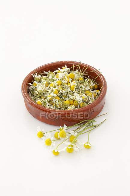 Vista de cerca de las flores secas de manzanilla en un plato de terracota - foto de stock