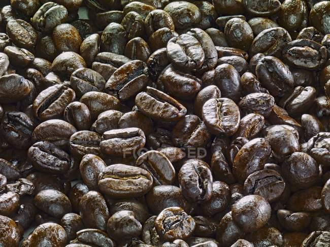Французька смажені цілому кавових зерен — стокове фото