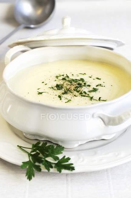 Cream of celery soup — Stock Photo