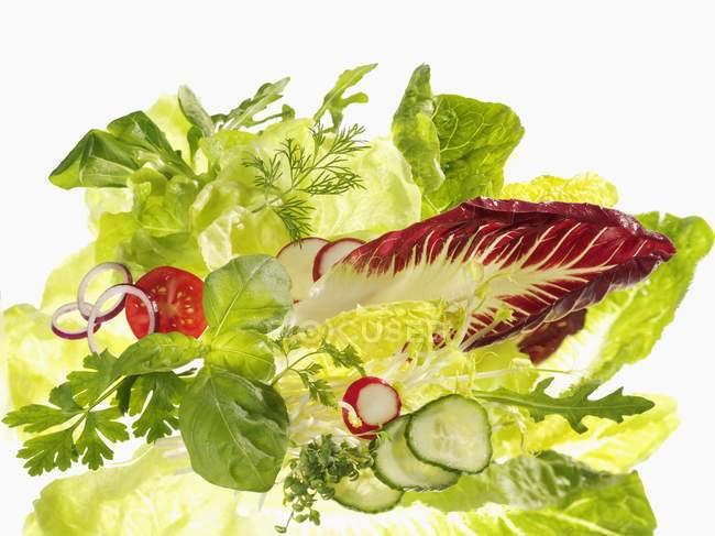 Varios ingredientes de ensalada en la superficie blanca - foto de stock
