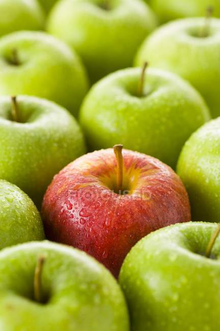 Red apple among green apples — Stock Photo