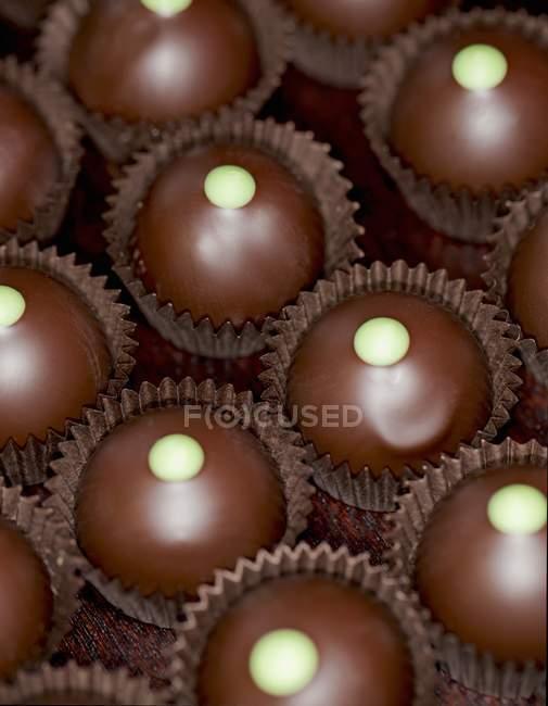 Chocolats avec remplissage de cèdre — Photo de stock
