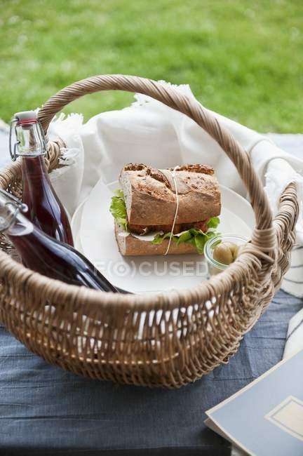 Picknick-Korb mit sandwich — Stockfoto