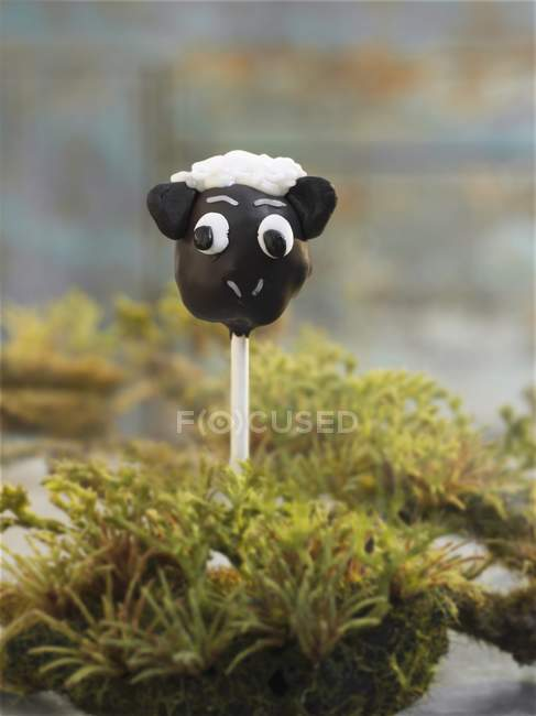 Cake pop in form of chocolate sheep — Stock Photo