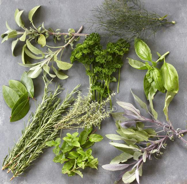Vue de dessus des herbes différentes sur une surface grise — Photo de stock