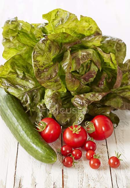 Lettuce with cucumber and tomatoes — Stock Photo
