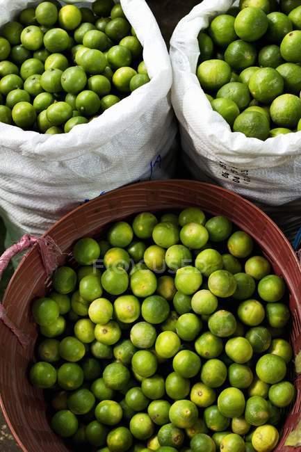 Лимоны в мешки и пластиковый контейнер — стоковое фото