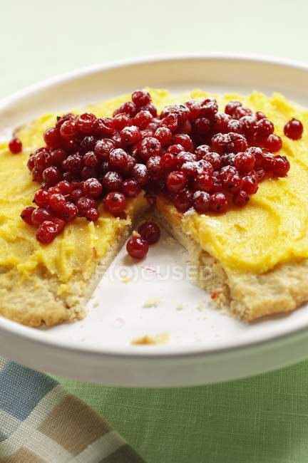 Buttercream торт с красная смородина — стоковое фото