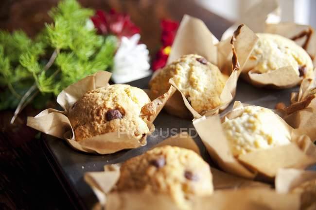 Muffins de chip Choc en la bandeja de la hornada - foto de stock