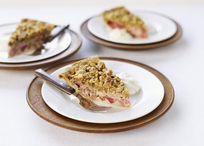 Ломтики пирога с мякотью ревеня — стоковое фото