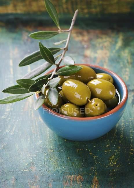 Чаша маринованные оливки — стоковое фото