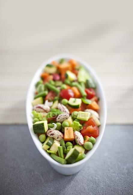 Verdura de la sopa en un tazón de fuente oval - foto de stock