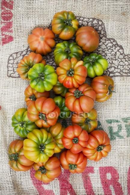Various beefsteak tomatoes — Stock Photo