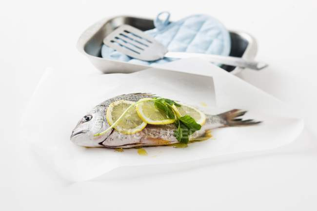 Seabream with lemon slices and basil — Stock Photo