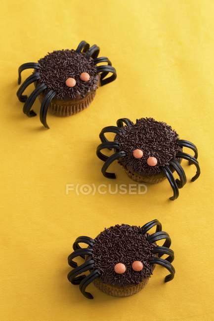 Chocolate spider cupcakes — Stock Photo