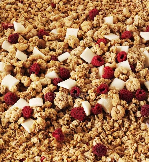 Crunchy muesli with raspberries — Stock Photo