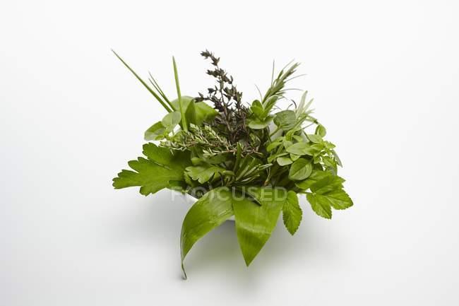 Vista elevada de un tazón de hierbas frescas sobre un fondo blanco - foto de stock