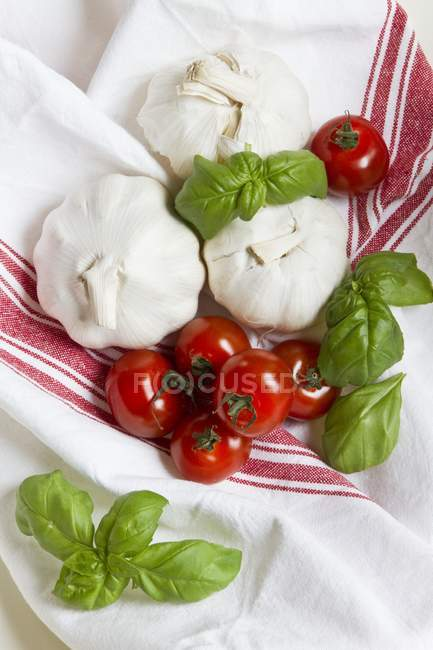 Cocktail tomatoes and basil — Stock Photo