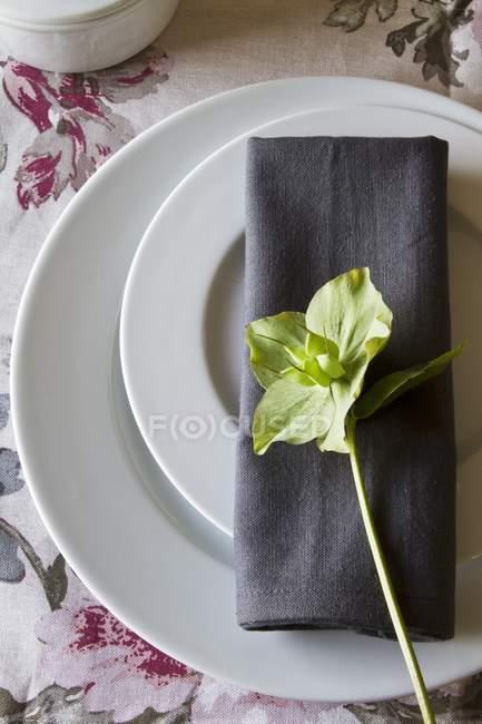 Місце обстановці з двох пластин і сірий серветкою, прикрашені зелений зимових троянди — стокове фото