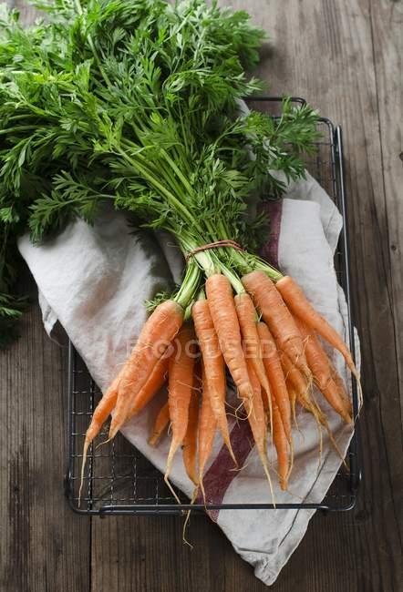 Zanahorias frescas - foto de stock