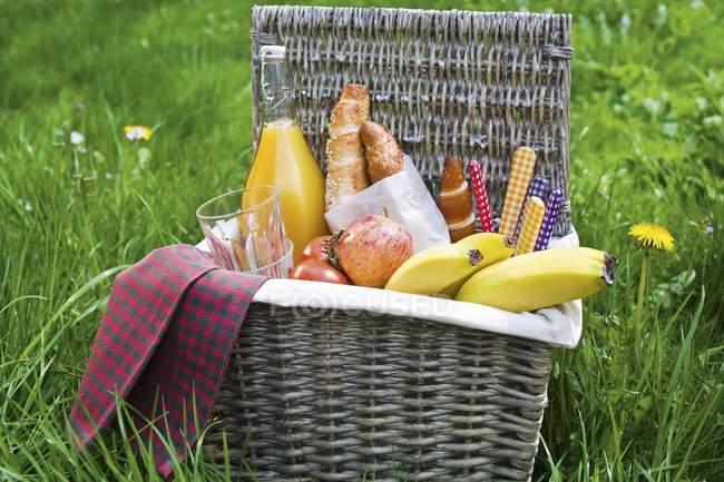 Picknick-Korb mit Früchten — Stockfoto