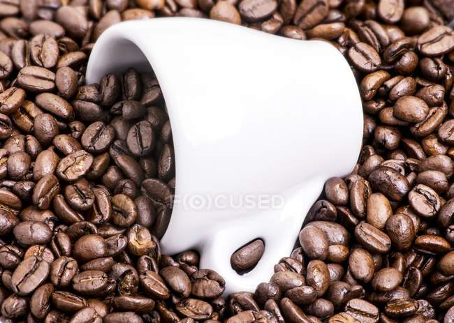 Espresso cup on coffee beans — Stock Photo