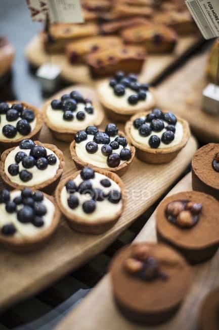 Tartelettes aux bleuets, les financiers et les gâteaux au chocolat — Photo de stock