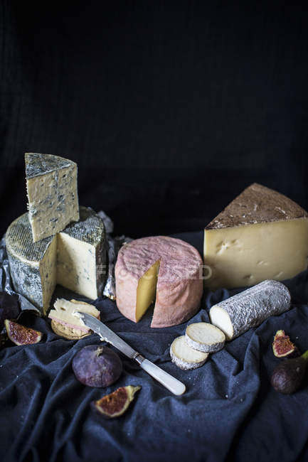 Selection of cheeses with figs — Stock Photo