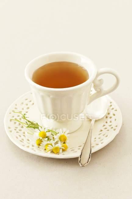 Tasse de thé à la camomille — Photo de stock