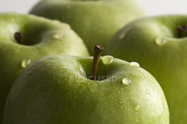 Green freshly washed apples — Stock Photo