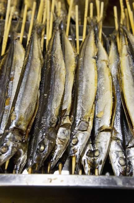 Gegrillter Fisch auf sticks — Stockfoto