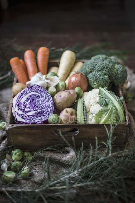 Vegetable box with cabbage — Stock Photo