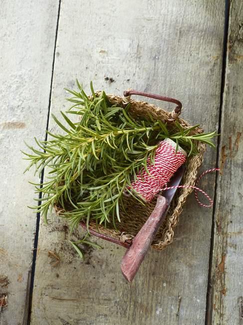 Romarin frais avec ficelle de cuisine — Photo de stock
