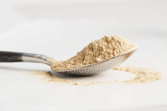 Ложку maca порошок — стоковое фото