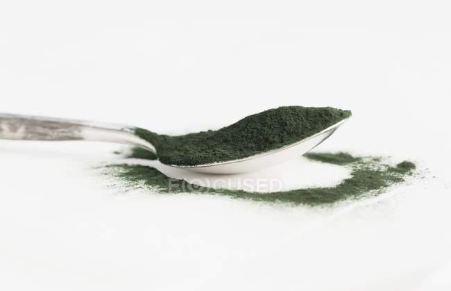 Ложку порошка спирулины — стоковое фото