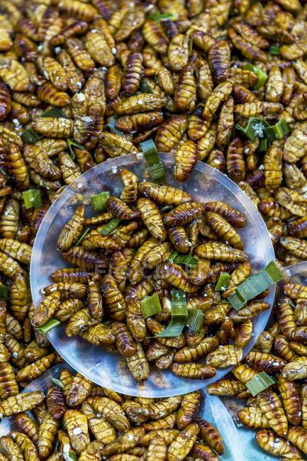Top view of fried silkworm larvas with herb — Stock Photo