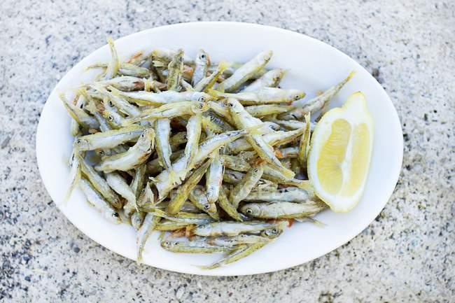 Жареные сардины с лимоном — стоковое фото